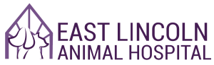 East Lincoln Animal Hospital