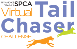 2021 Virtual Tail Chaser Challenge