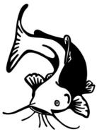 Crescent City Catfish 5K