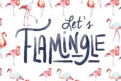 Let's Flamingle, An Awesomesauce Event