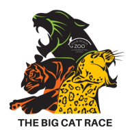 Big Cat Race 5K - POSTPONED UNTIL 2021
