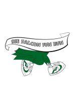 Shady Shores Elementary Falcon Fun Run