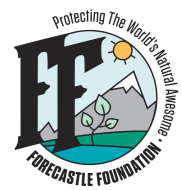 Forecastle Foundation Five Miler (Trail) VIRTUAL