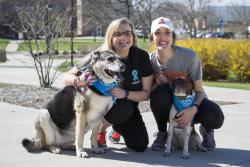 Sexual Assault Awareness Month 5K & Dog Walk