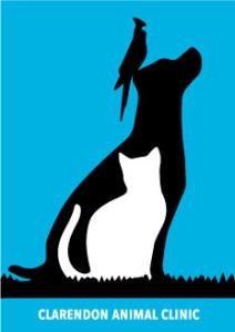 Clarendon Animal Clinic