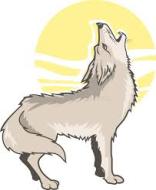 Cortland Rotary Club Howl at the Moon 5k