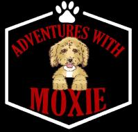 Moxie's Birthday Pawty: Moxie's Mission 2ND 6 legged Relay Fun Run @ Bar K Dog Bar