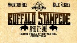 2019 Buffalo Stampede