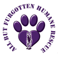 All But Furgotten - Doggie Dash & Dance Fundraiser