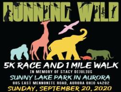 Virtual Believe in Dreams Running Wild 5K Race
