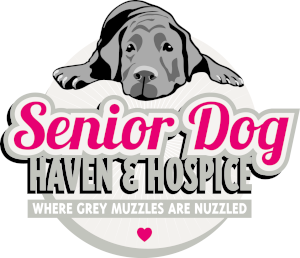 Senior Dog Haven and Hospice