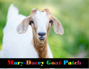 Mary-Dacey Goat Patch
