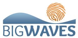 Big Waves Virtual 5k