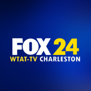 Fox 24