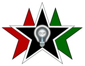 Black Light Projects