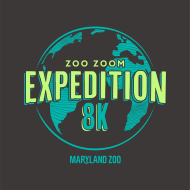 ZooZOOM 2019