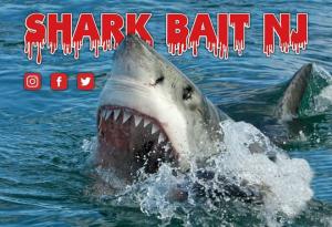 Shark Bait Food Truck