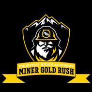 2021 Miner Gold Rush