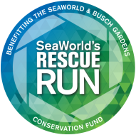 Inaugural SeaWorld's Rescue Run benefitting the SeaWorld & Busch Gardens Conservation Fund