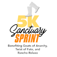 Sanctuary Sprint 5k