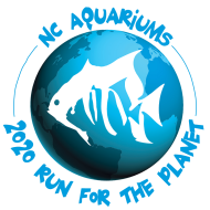 Run for the Planet 5K, 10K and 13.1