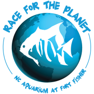 Race for the Planet
