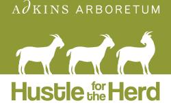 Hustle for the Herd