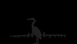 Mighty Matapeake Multisport Festival Logo