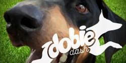 Dobie Dash