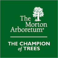 The Champion of Trees 10K