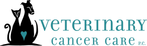 Veterinary Cancer Care