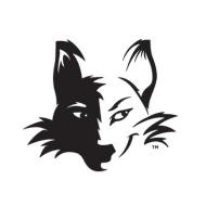 2020 Sly Fox Summer 5k Series