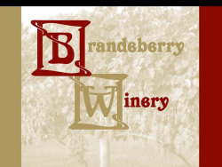 Brandeberry Wine Run 5k