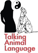 Talking Animal Language
