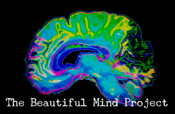 The Beautiful Mind Run 5K