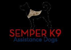 Semper K9 Virtual 5K