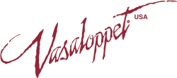 2021 Virtual Vasaloppet USA