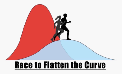 Race to Flatten the Curve