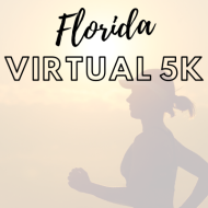 Florida Virtual 5k  - Statewide Event