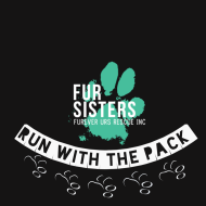 Run with the Pack Virtual 5k