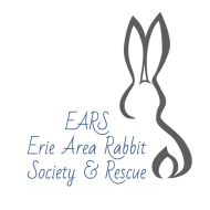 EARS Virtual 5K Bunny Hop and 1 Mile Walk