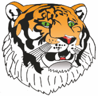 Tiger Virtual 5K Race