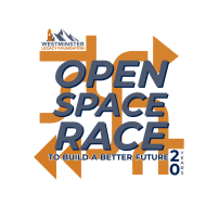 Open Space Virtual Race to Build a Better Future