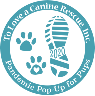 TLC Rescue's Pandemic Pop-Up for Pups