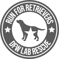 2020 Run for Retrievers Virtual 5K