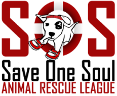 Save One Soul Animal Rescue League Crate Escape Virtual Challenge
