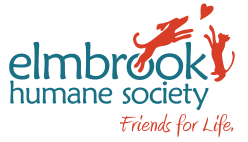 Elmbrook Humane Society Wagfest Virtual 5K Run/Walk