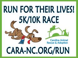 CARA Virtual RUN For Their Lives! 2020