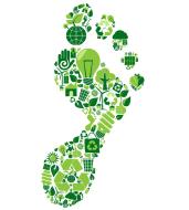 "Carbon ""Footprints"" - A Citizen Science Virtual Challenge to Offset Carbon Emissions"