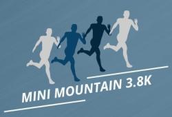 Mini-Mountain 3.8K